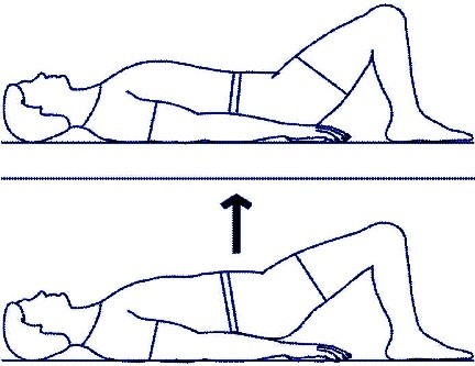 Gluteal Sets or Pelvic Lifts